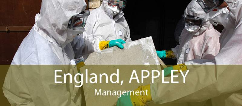 England, APPLEY Management