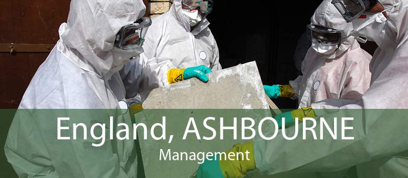 England, ASHBOURNE Management