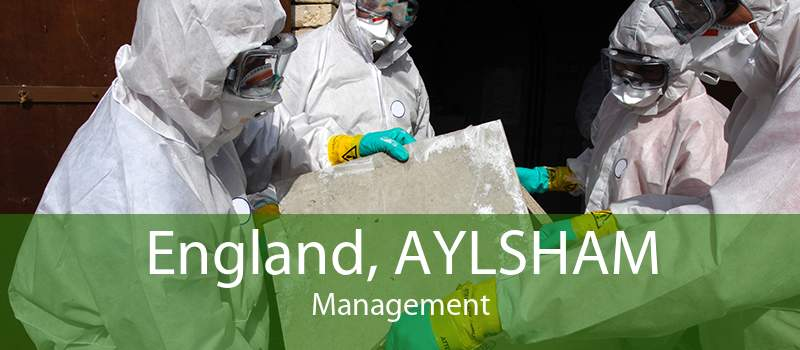England, AYLSHAM Management