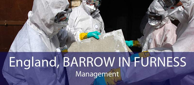 England, BARROW IN FURNESS Management
