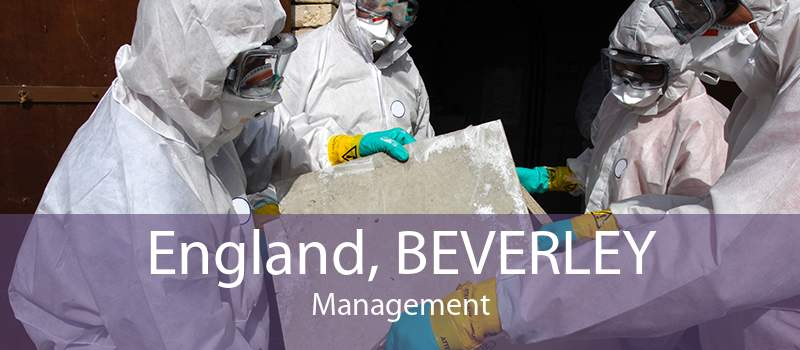 England, BEVERLEY Management