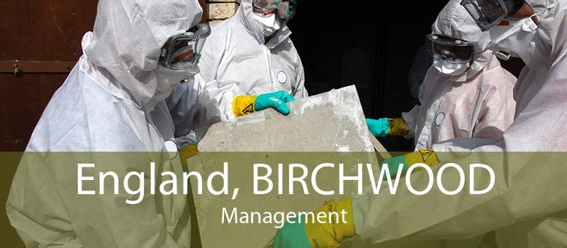England, BIRCHWOOD Management