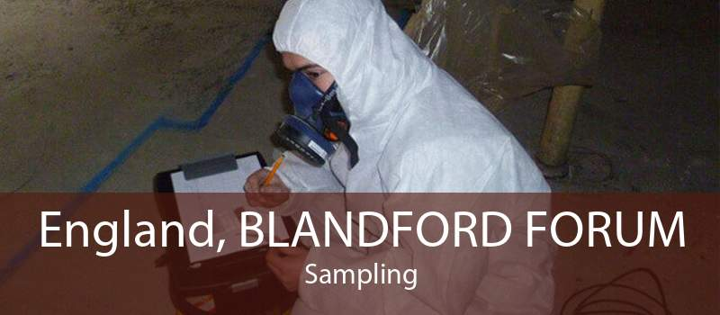 England, BLANDFORD FORUM Sampling