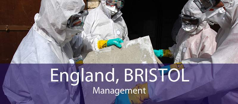 England, BRISTOL Management