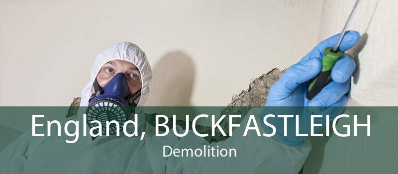 England, BUCKFASTLEIGH Demolition