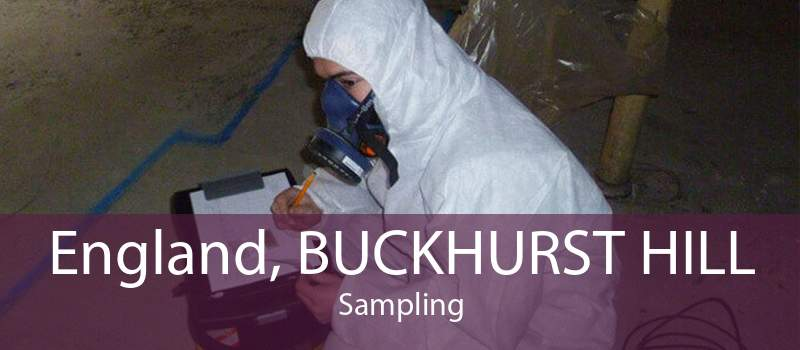 England, BUCKHURST HILL Sampling