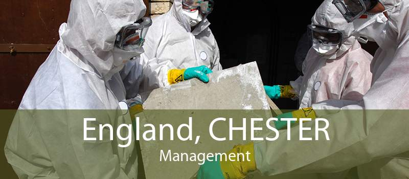 England, CHESTER Management