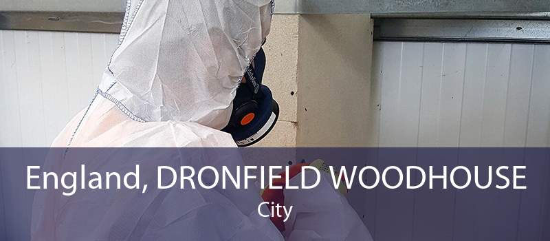 England, DRONFIELD WOODHOUSE City