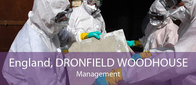 England, DRONFIELD WOODHOUSE Management