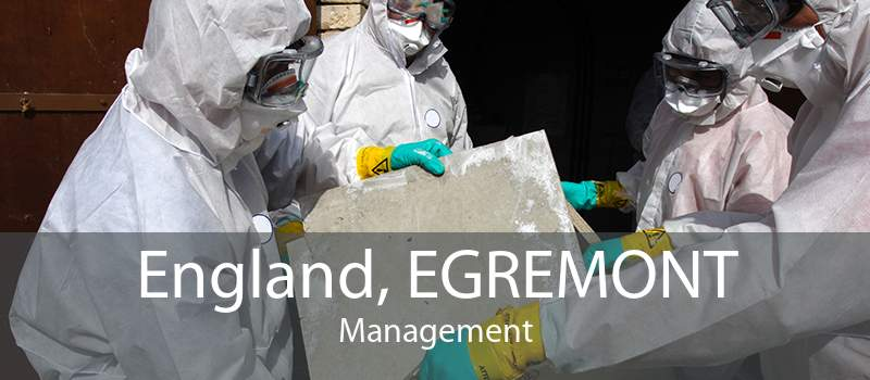England, EGREMONT Management