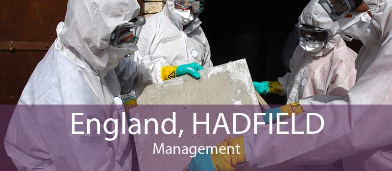 England, HADFIELD Management
