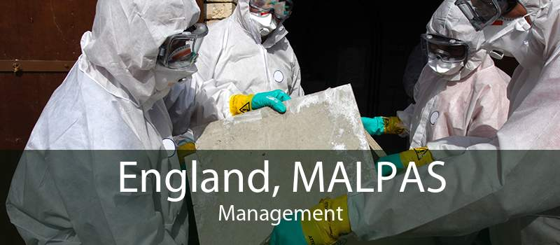 England, MALPAS Management
