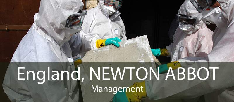 England, NEWTON ABBOT Management