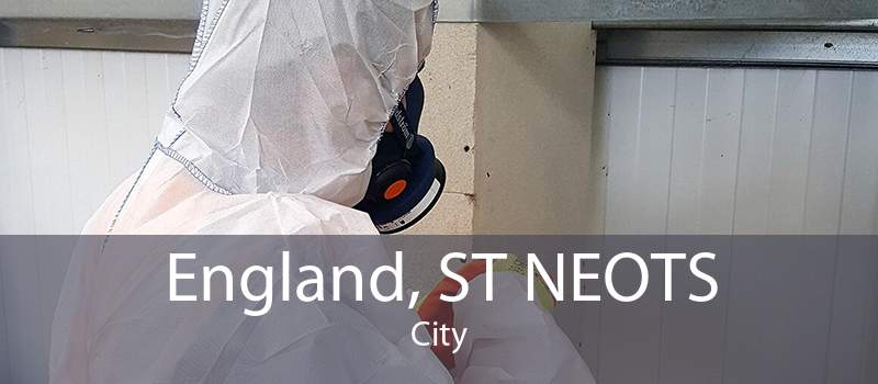 England, ST NEOTS City