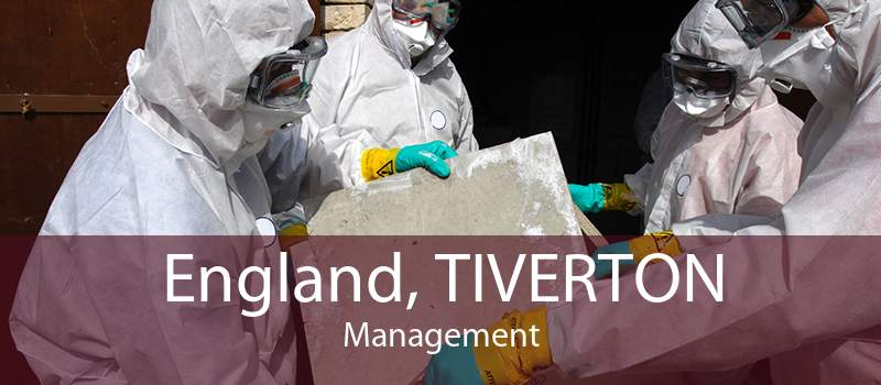 England, TIVERTON Management